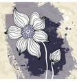 Snowdrop flower on Crumpled paper background vector image