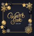 winter sale hand written lettering vector image