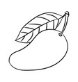 line drawing of mango -simple line vector image