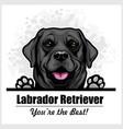 black labrador - peeking dog head dog vector image vector image