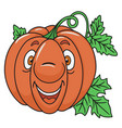 fresh pumpkin cartoon vector image vector image