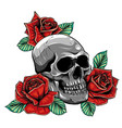 skull with flowers with roses drawing hand vector image vector image