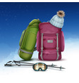 winter climbing packs vector image