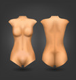 female dummy or woman naked body vector image