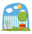 floral houseplant with fence in the garden vector image vector image