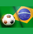 football ball and brazil flag vector image