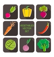 IconsVegetables3 vector image