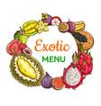tropical fruits sketch banner exotic fruits frame vector image vector image
