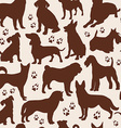Dog seamless pattern vector image