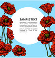 hand drawn red poppies with space for text floral vector image vector image