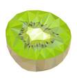 kiwi polygonal vector image vector image