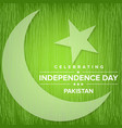 pakistan independence day green scribbled vector image vector image