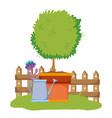 tree inside plant pot with wood grillage and vector image vector image