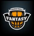 Fantasy basketball sports logo emblem vector image