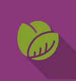 cabbage icon in flat style vector image vector image