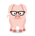 cute pig with glasses vector image