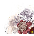 floral with peony and cosmos flowers vector image