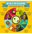 Mexico infographic elements flat style vector image vector image