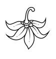 pattern thai stylewallpaper and black line flower vector image