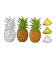 whole and slice pineapple black vintage vector image vector image