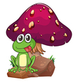 A frog above the rock with a mushroom at the back vector image vector image
