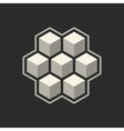 Abstract icon with 3d cubes vector image vector image