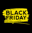 black friday text on the paint splash vector image vector image