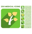 Garden Plant Icon and Medical Longshadow Icon Set vector image