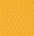 Honeycomb Pattern vector image vector image