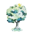 Watercolor trees vector image vector image