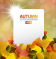 autumn background with white card vector image vector image
