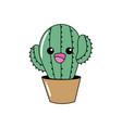kawaii cute tender cactus plant vector image vector image