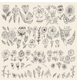 Set of hand drawn flowers and leaves vector image vector image
