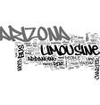 why rent an arizona limousine or arizona charter vector image vector image