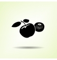 Apple and mandarin icon Two fruits black vector image
