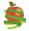 Apple with ribbon for the text - organic or health vector image vector image