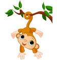 Baby monkey on a tree vector | Price: 3 Credits (USD $3)