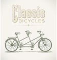 Classic tandem bicycle vector image vector image