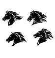 Horse mascots vector image