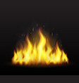 realistic fire on a transparent background vector image vector image