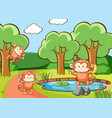scene with monkeys in forest vector image vector image