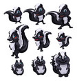 set of skunks of different sizes and pose vector image vector image