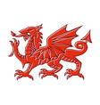 welsh red dragon on white background vector image vector image