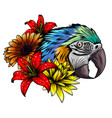 bright parrots on a branch with tropical flowers vector image