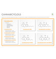 cannabicyclols with structural formulas vector image vector image