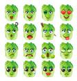 chinese cabbage emoji emoticon expression funny vector image vector image
