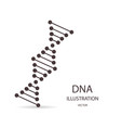 dna simbol in flat style on a white background vector image