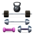 Dumbbells Barbells And Weight vector image