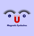 magnetic eyelashes vector image