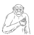 monkey with grenade coloring vector image